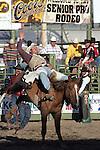 Senior Pro Rodeo