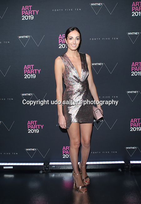 2019 Whitney Art Party