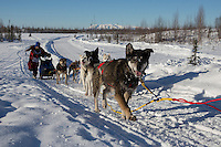 Joshua Klejka on the trail of the 2014 Jr. Iditarod Sled Dog Race at Happy Trails Kennel, Big Lake, Alaska<br /> Sunday February 23, 2014 <br /> <br /> Junior Iditarod Sled Dog Race 2014<br /> PHOTO BY JEFF SCHULTZ/IDITARODPHOTOS.COM  USE ONLY WITH PERMISSION