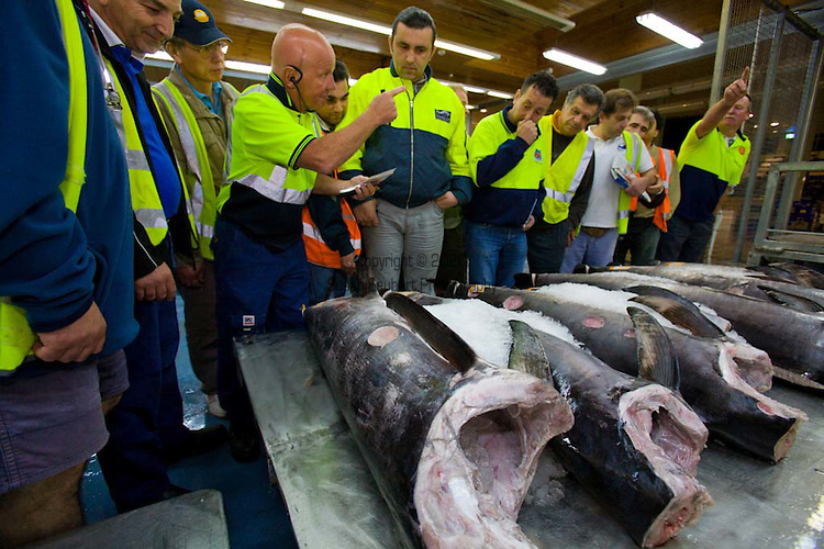 Sydney Fish Market is the largest market of its kind in the Southern Hemisphere and the world's second largest seafood market in terms of variety outside of Japan, SFM auctions over 100 species daily. Sourcing product both nationally and internationally, SFM trades close to 13,000 tons of seafood annually..The fish auction is open to the public on Mondays and Thursdays.