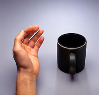 CHIRALITY: HUMAN HAND &amp; COFFEE MUG<br />