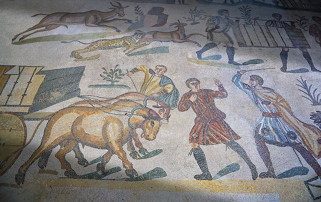 Ox man being diciplined from the Ambulatory of The Great Hunt, room no 28,  at the Villa Romana del Casale,  first quarter of the 4th century AD. Sicily, Italy. A UNESCO World Heritage Site.