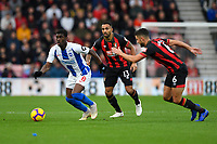 AFC Bournemouth vs Brighton & Hove Albion 22-12-18