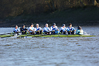 Crew: 109   Sons of the Thames   MasD<br /> <br /> Quintin Head 2019<br /> <br /> To purchase this photo, or to see pricing information for Prints and Downloads, click the blue 'Add to Cart' button at the top-right of the page.