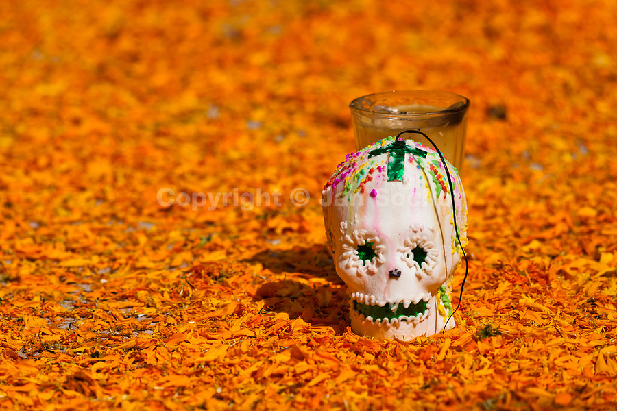 A decorated scull is placed at the altar of the dead (altar de muertos), a religious site honoring the deceased, during the Day of the Dead festivities in Morelia, Michoacán, Mexico, 1 November 2014. Day of the Dead ('Día de Muertos') is a syncretic religious holiday, celebrated throughout Mexico, combining the death veneration rituals of the ancient Aztec culture with the Catholic practice. Based on the belief that the souls of the departed may come back to this world on that day, people gather on the gravesites praying, drinking and playing music, to joyfully remember friends or family members who have died and to support their souls on the spiritual journey.