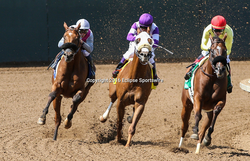 "DEL MAR, CA  AUGUST 27: #5 Masochistic and Tyler Baze head into the final turn ahead of #3 Vyjack and Flavien Prat, and #4 Indexical and Mario Gutierrez  in the Pat O'Brien Stakes (Gll) ""Win and You're In Dirt Mile Division"" at Del Mar Turf Club on August 27, 2016 at Del Mar, CA (Photo by Casey Phillips/Eclipse Sportswire/Getty Images)DEL MAR, CA  AUGUST 27:  at Del Mar Turf Club on August 20, 2016 at Del Mar, CA (Photo by Casey Phillips/Eclipse Sportswire/Getty Images)"