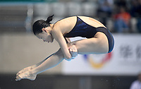 China's Shan Lin competes in the 3m Springboard <br /> <br /> Photographer Hannah Fountain/CameraSport<br /> <br /> FINA/CNSG Diving World Series 2019 - Day 3 - Sunday 19th May 2019 - London Aquatics Centre - Queen Elizabeth Olympic Park - London<br /> <br /> World Copyright © 2019 CameraSport. All rights reserved. 43 Linden Ave. Countesthorpe. Leicester. England. LE8 5PG - Tel: +44 (0) 116 277 4147 - admin@camerasport.com - www.camerasport.com