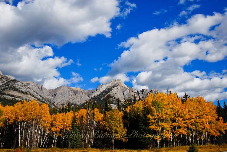 Fall colors at Banff National Park, Alberta