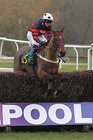 Monroe Park ridden by Jack Quinlan in jumping action in the Robert Case Memorial Novices Chase