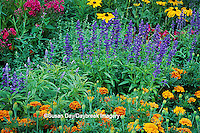63821-08607 French Marigold, Blue Victoria Salvia, Domino Red Nicotiana, Tall Garden Phlox, Indian Summer Black-eyed Susans  Marion Co. IL