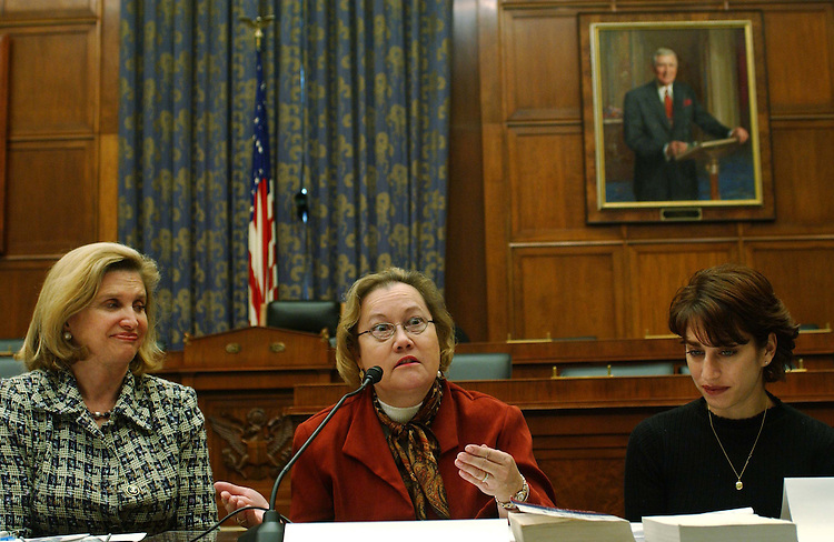 11/10/04.BRIEFING ON INTELLIGENCE REFORM CONFERENCE--Rep. Carolyn B. Maloney, D-N.Y., with family members of victims of the Sept. 11 attacks during a news conference on the intelligence reform conference. Carol Ashley speaks, and Carie Lemack looks on. Former Rep. Tim Roemer, D-Ind. (1991-2003), and a member of the Sept. 11 commission, also attended. From CQ.com: The family members, who come to Washington regularly to lobby for a bill that incorporates the recommendations of the Sept. 11 commission, blamed House Armed Services Chairman Duncan Hunter, R-Calif., as well as House Intelligence Committee Chairman Peter Hoekstra, R-Mich., for the conference stalemate..CONGRESSIONAL QUARTERLY PHOTO BY SCOTT J. FERRELL