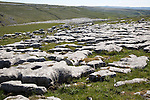 Limestone pavements at Malham, Yorkshire Dales national park, England, UK