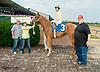 Sara's Angel winning at Delaware Park on 8/26/2013