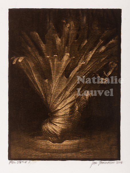 This is a Platinum Palladium print on Velum over pure gold leaf. <br />