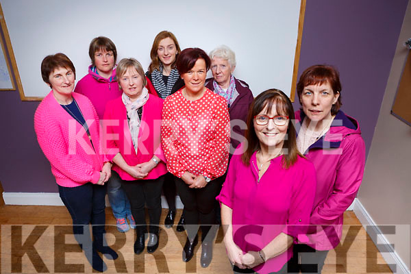 Carmel Riordan and Susan Healy  with back l-r: Kathleen ryan, Marie Lehane, Marie Brosnan, Elaine Coffey, Noreen O'Leary and Mary Moynihan who are inviting everyone to come to Kilcummin Klub bar dressed in Pink on Saturday 6th January in aid of Breast Cancer