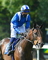 Motakhayyel ridden by Jim Crowley goes down to the start of The AJN Steelstock Sovereign Stakes during Horse Racing at Salisbury Racecourse on 9th August 2020