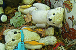 Discarded toy bears