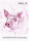Simon, REALISTIC ANIMALS, REALISTISCHE TIERE, ANIMALES REALISTICOS, paintings+++++KatherineW_SplatterPig,GBWR32,#a#, EVERYDAY