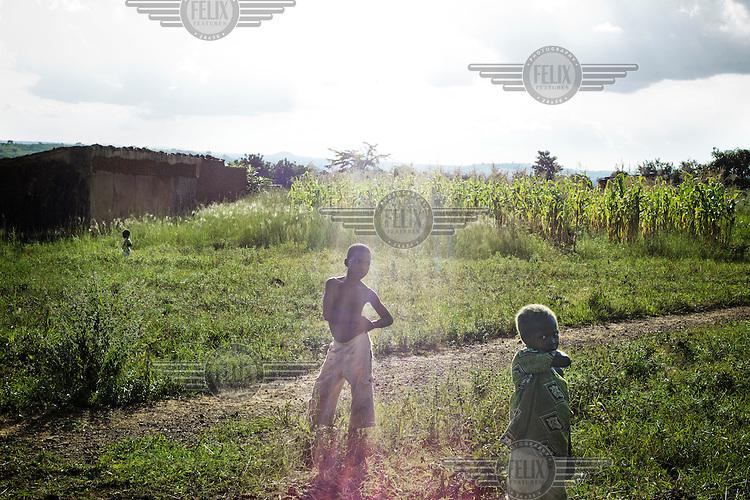 Children standing in a field of maize. /Felix Features