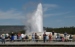 Old Faithful Geyser.Yellowstone National Park Wyoming.June 12, 2006. © Fitzroy Barrett