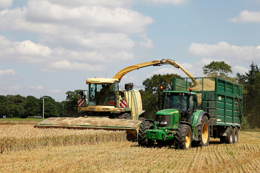 Photo: Richard Lane/Richard Lane Photography. Krone self propelled forage harvester cutting whole crop winter wheat for silage near Pewsey, Wiltshire. 22/07/2014.