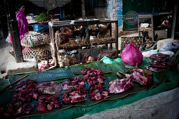 A teenage girl behind her stall selling dog meat at a marketplace in Kohima, in front of a cage of chickens. Dog meat is a delicacy in Nagaland.