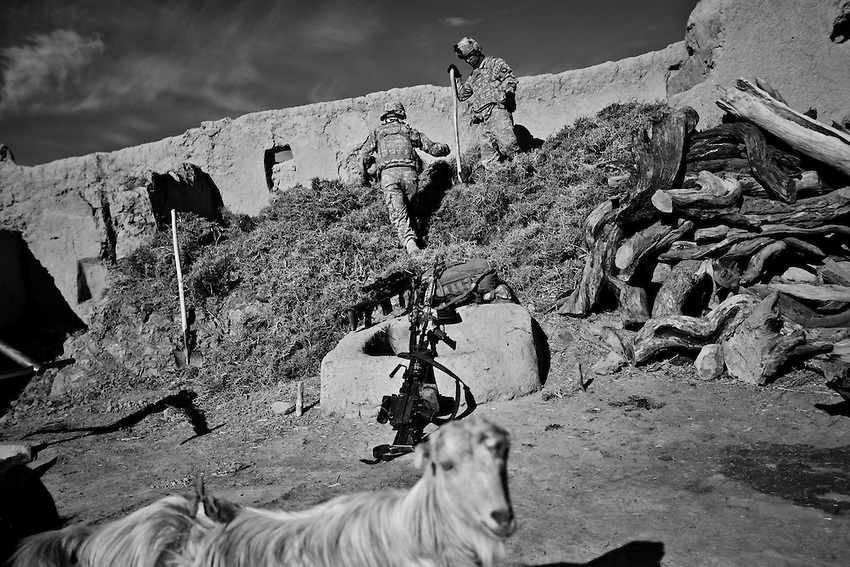 Members of 1/506th Infantry, Scout Platoon, search an Afghan farm during an operation in Shamamolzi, Paktika province, Afghanistan, Sunday, Feb. 8, 2009.