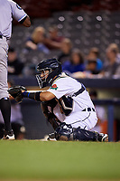 Connecticut Tigers catcher Gresuan Silverio (13) waits to receive a pitch during a game against the Hudson Valley Renegades on August 20, 2018 at Dodd Stadium in Norwich, Connecticut.  Hudson Valley defeated Connecticut 3-1.  (Mike Janes/Four Seam Images)