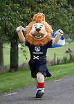 Roary the Lion spotted on the loose in a field near Erskine today