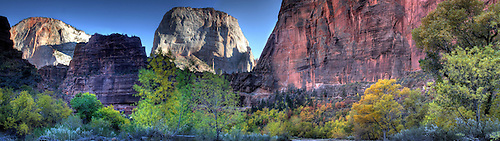 The Great White Throne peers through Big Bend during autumn at Zion National Park