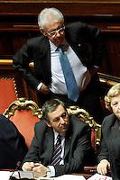 .Roma 22/12/2011 Senato. Voto di Fiducia sulla Manovra Economica.Votation at Senate about austerity plan. .Photo Samantha Zucchi Insidefoto