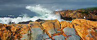 Colorful sandstone rocks and waves. Point Lobos State Reserve. California
