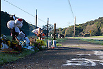 Isaac Brott Novato Roadside Memorial 2011