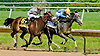 Bryan's Jewel winning The Obeah Stakes (gr 3) at Delaware Park on 6/15/13