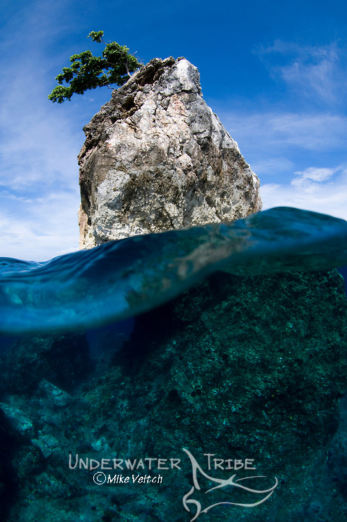 One Tree Rock, Boo Island, Misool, Raja Ampat, West Papua, Indonesia, Pacific Ocean