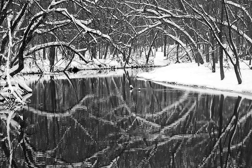 Winter Scenes Various views of winter scenes.