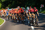 Team Ineos lead the peloton during Stage 3 of the Deutschland Tour 2019, running 189km from Gottingen to Eisenach, Germany. 31st August 2019.<br /> Picture: ASO/Marcel Hilger | Cyclefile<br /> All photos usage must carry mandatory copyright credit (© Cyclefile | ASO/Marcel Hilger)