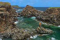 Cliffs on coast of the Atlantic Ocean<br /> Elliston<br /> Newfoundland & Labrador<br /> Canada