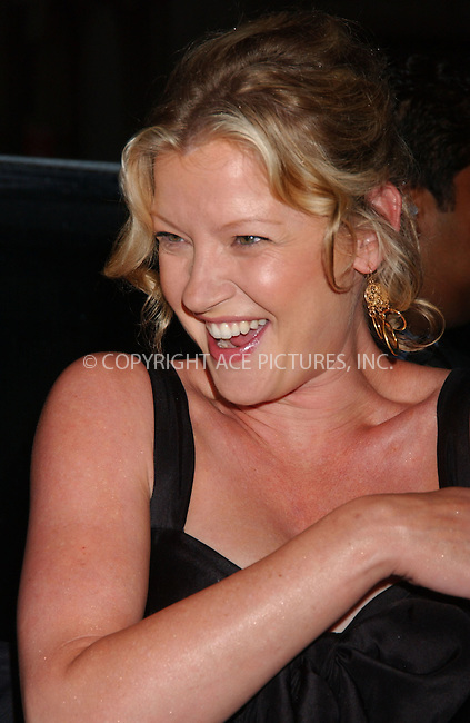 WWW.ACEPIXS.COM . . . . . ....July 23 2007, New York City....Actress Gretchen Mol attending the premiere of 'The Ten' at the DGA Theatre in midtown Manhattan.....Please byline: KRISTIN CALLAHAN - ACEPIXS.COM.. . . . . . ..Ace Pictures, Inc:  ..(646) 769 0430..e-mail: info@acepixs.com..web: http://www.acepixs.com