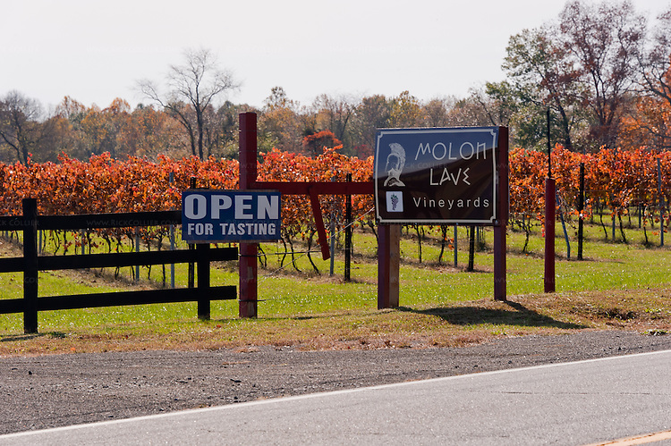 The entrance to Molon Lave Vineyards is clearly marked by signage standing in front of the vineyards.