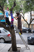 "Yarn bombing, Annuska, Lucas and Miriam ""yarn bombing"" a tree in Condesa, Mexico City."
