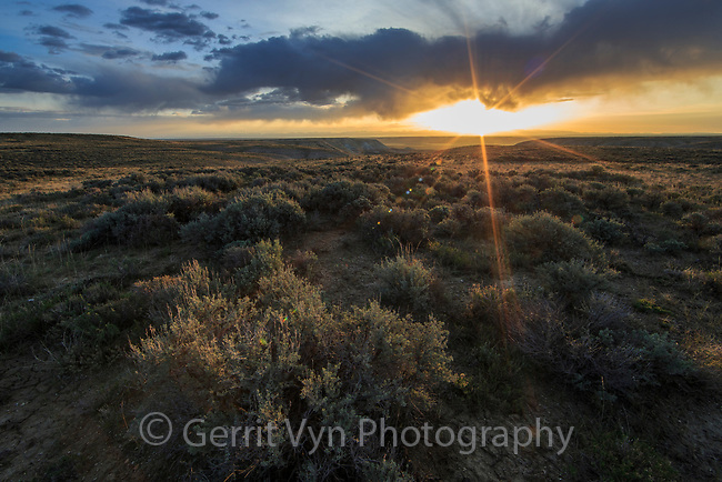 Sagebrush-steppe. Alkali Draw. Sublette County, Wyoming.