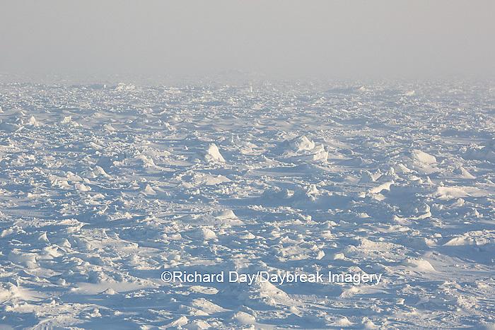 60595-01117 Hudson Bay ice pack at Cape Churchill Wapusk National Park, Churchill, MB