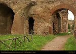 Domus Tiberiana Retaining Walls near Basilica Julia Palatine Hill Rome