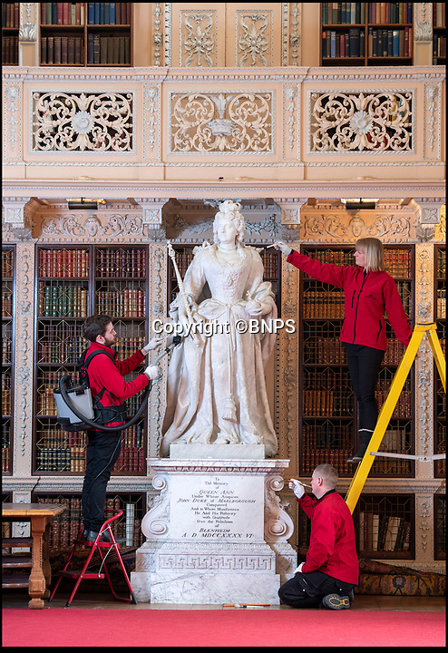 BNPS.co.uk (01202 558833)<br /> Pic: PhilYeomans/BNPS<br /> <br /> The beautiful marble statue of Queen Anne was commissioned by a grateful Duke and Duchess after the Queen's death.<br /> <br /> The real-life characters behind Olivia Colman's Oscar-tipped film The Favourite have been reunited as part of Blenheim Palace's annual deep clean.<br /> <br /> The portraits of Queen Anne, played by Colman in the film, and Sarah, the first Duchess  of Marlborough, who was portrayed by Rachel Weisz, have been brought together in Blenheim's Great Hall to allow a team of specialist's to undertake the winter clean.<br /> <br /> The film, a historical comedy/drama, depicts the tumultuous relationship between the pair in the early 18th century.<br /> <br /> The land to build Blenheim was gifted to the first Duke and Duchess by Queen Anne after John Churchill's stunning pan-european alliance defeated Louis XIV of France.<br /> <br /> Despite Anne gifting them the land to build the magnificent Palace she also eventually stripped them of their official roles at Court after falling out with strong minded Duchess.