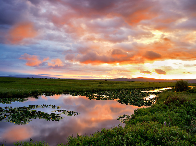 Sunrise at Klamath Marsh National Wildlife Refuge, Oregon
