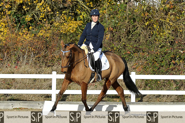Class 2. Prelim 19. British Dressage (BD). Brook Farm Training Centre. Stapleford Abbots. Essex. UK. 19/11/2016. ~ MANDATORY CREDIT Garry Bowden/Sport in Pictures - NO UNAUTHORISED USE - +447837 394578