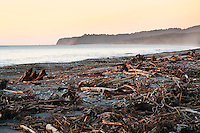 Driftwood ladden beach during setting sun at Bruce Bay - South Westland, West Coast, New Zealand