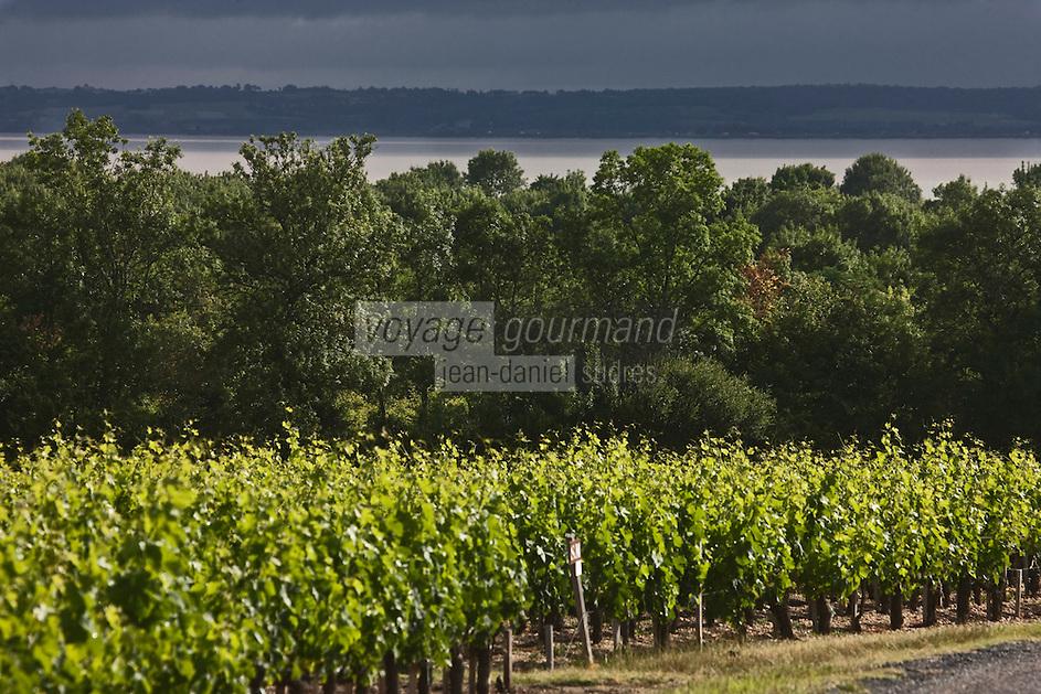 Europe/France/Aquitaine/33/Gironde/Env de Saint-Seurin-de-Cadourne: Le vignoble du Médoc et l'Estuaire de la Gironde