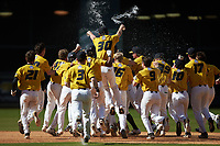 The Missouri Tigers celebrate after a walk-off hit by Peter Zimmermann (not pictured) in the bottom of the 10th inning against the Oklahoma Sooners in game four of the 2020 Shriners Hospitals for Children College Classic at Minute Maid Park on February 29, 2020 in Houston, Texas. The Tigers defeated the Sooners 8-7. (Brian Westerholt/Four Seam Images)